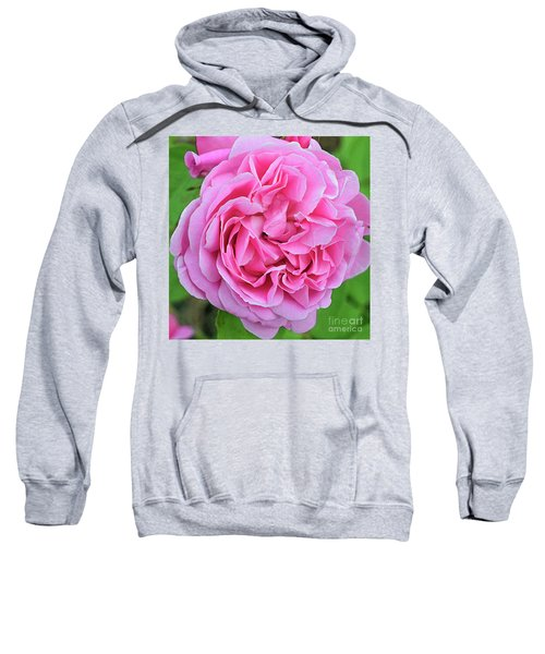 Mary Rose Sweatshirt