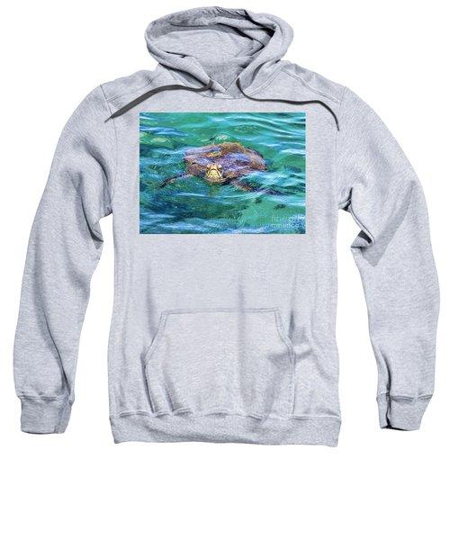 Maui Sea Turtle Sweatshirt