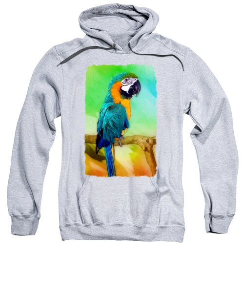Maya - Macaw Parrot  Sweatshirt by Linda Koelbel