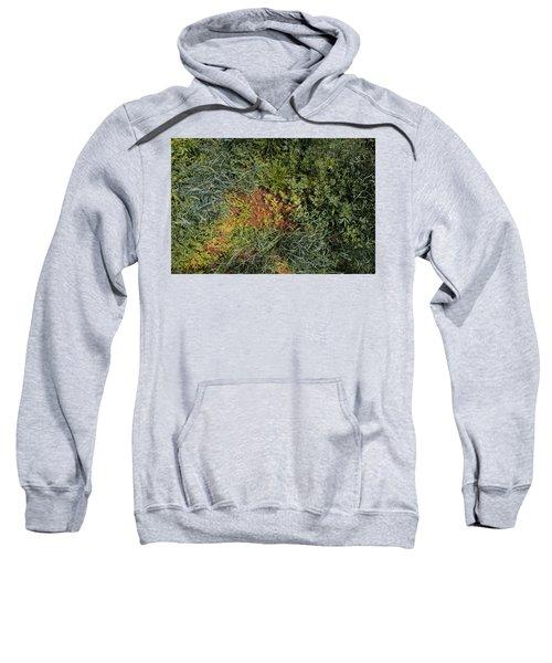 Meadow Floor Sweatshirt