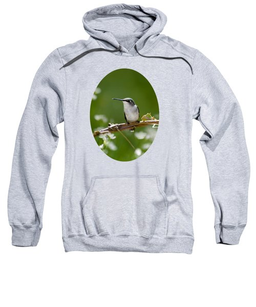Meadow Hummingbird Sweatshirt by Christina Rollo