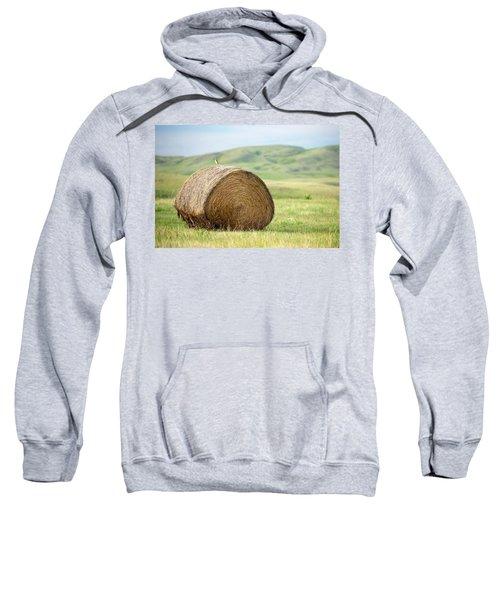 Meadowlark Heaven Sweatshirt by Todd Klassy