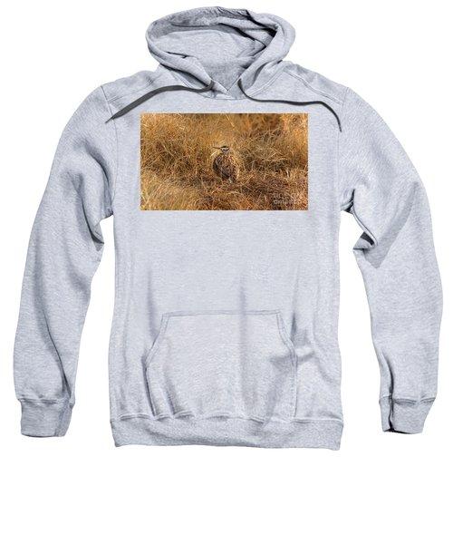 Meadowlark Hiding In Grass Sweatshirt by Robert Frederick