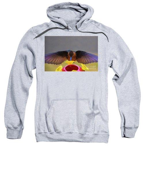 Meet Andre The Giant  Sweatshirt