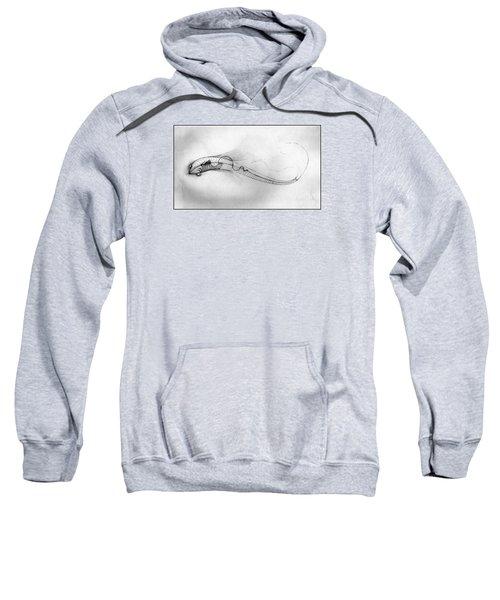 Megic Fish 2 Sweatshirt by James Lanigan Thompson MFA