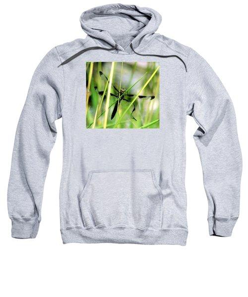 Just Emerged Sweatshirt