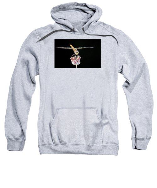 Midnight Landing Sweatshirt