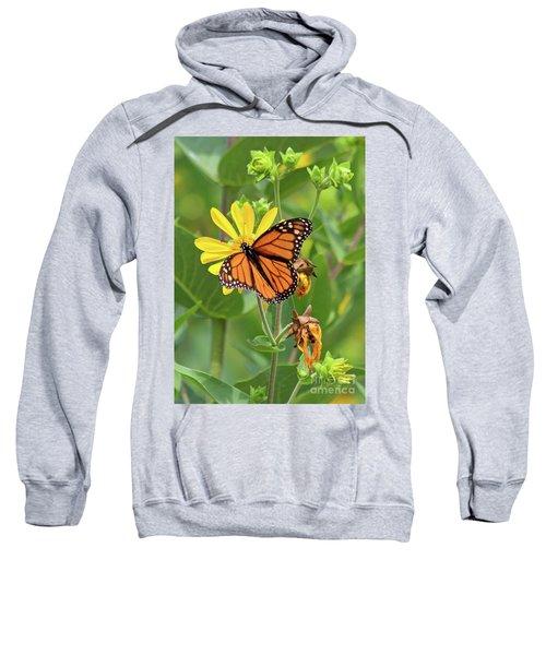 Mighty Monarch   Sweatshirt