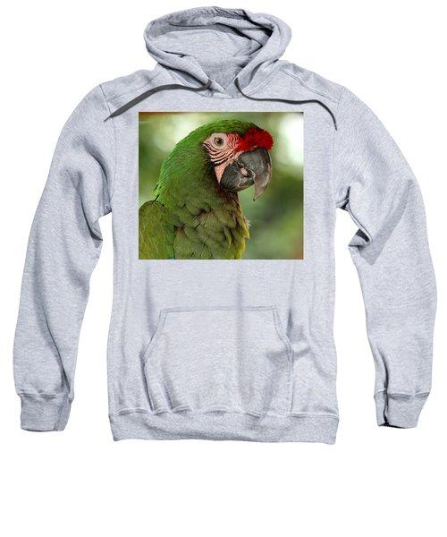 Military Macaw Sweatshirt