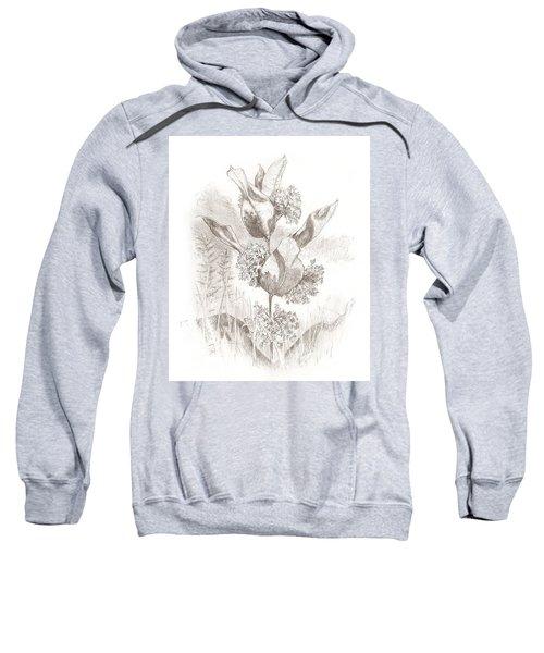 Milkweed Sweatshirt