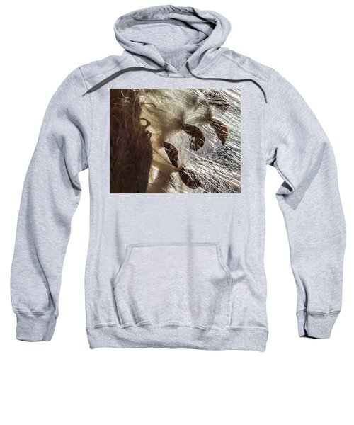 Milkweed Seed Burst Sweatshirt