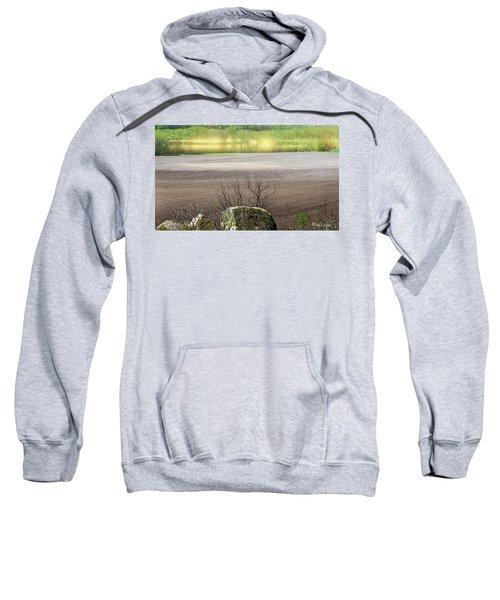 Minnesota Quantum Field..... Sweatshirt