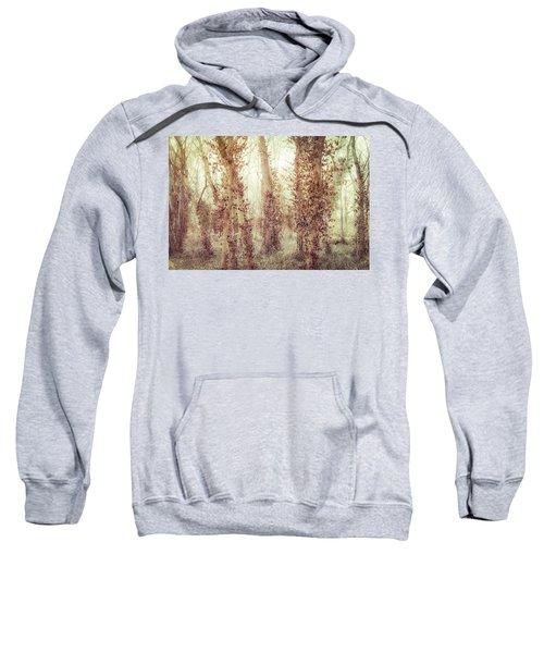 Misty Morning Winter Forest  Sweatshirt