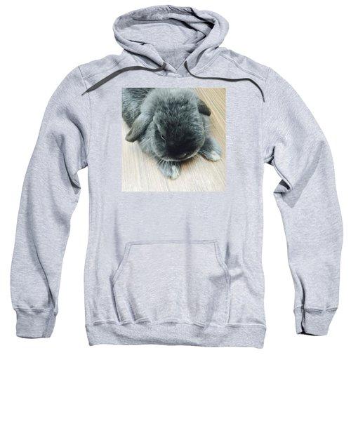 Mocousa Sweatshirt by Nao Yos