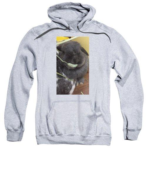 Mogmog Sweatshirt by Nao Yos