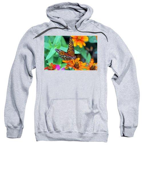 Monarch Butterfly Resting Sweatshirt