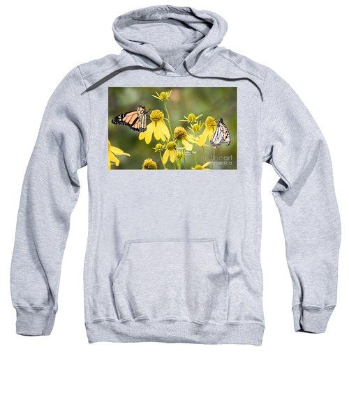 Monarchs Of Wisconsin Sweatshirt