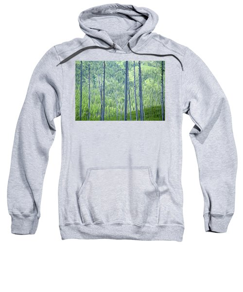 Montana Trees Sweatshirt