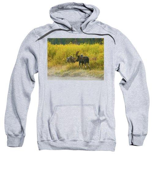 Moose Couple Sweatshirt