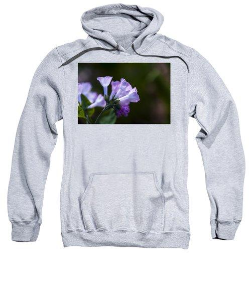 Morning Bluebells Sweatshirt