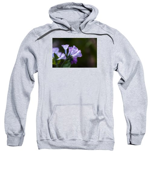 Morning Bluebells Sweatshirt