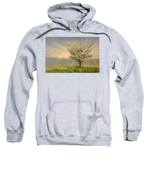 Morning Celebration Sweatshirt