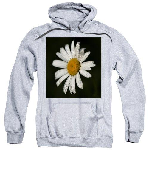 Morning Daisy Sweatshirt