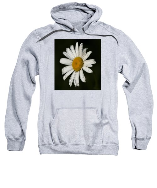 Morning Daisy Sweatshirt