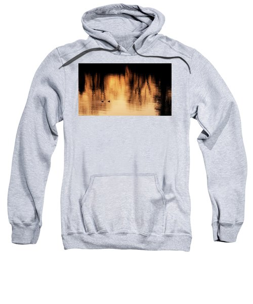 Sweatshirt featuring the photograph Morning Ducks 2017 by Bill Wakeley