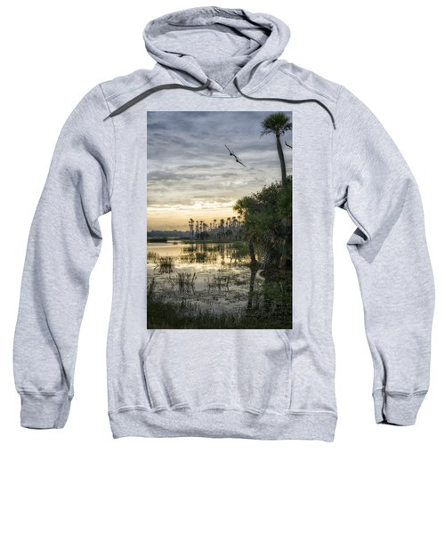 Morning Fly-by Sweatshirt