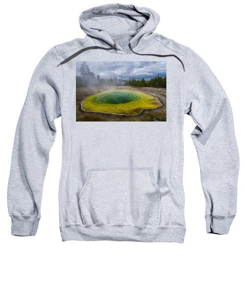 Morning Glory Pool Sweatshirt