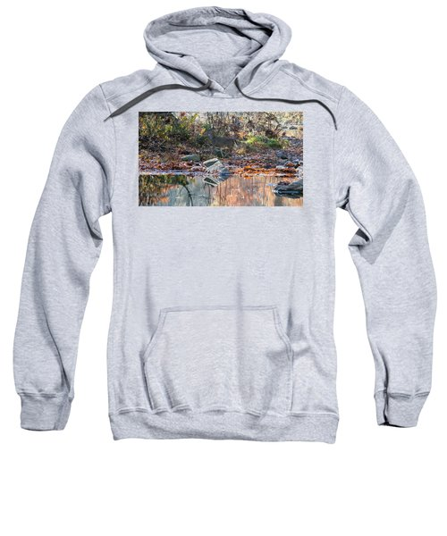 Morning In The Woods Sweatshirt