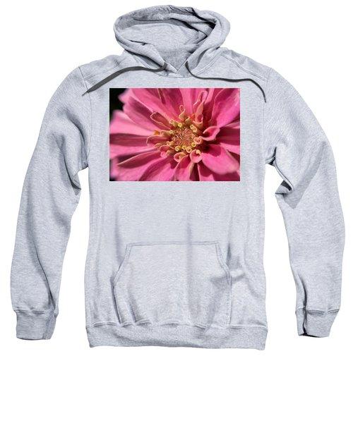 Morning Pink Sweatshirt
