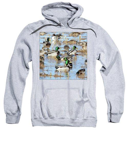 Mostly Mallards Sweatshirt