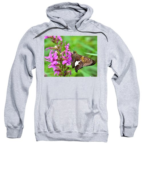 Moth Sweatshirt