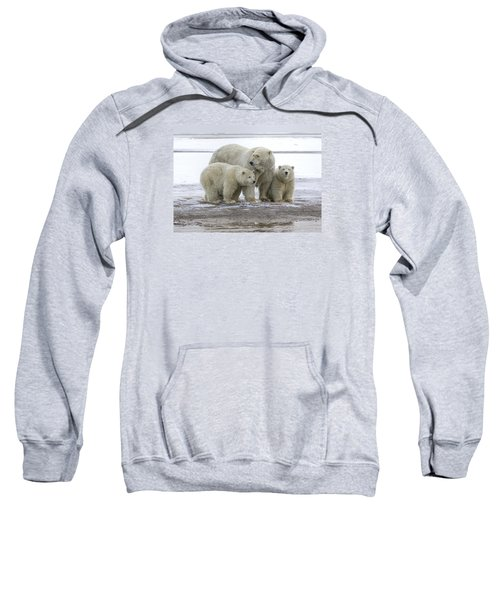 Mother And Cubs In The Arctic Sweatshirt