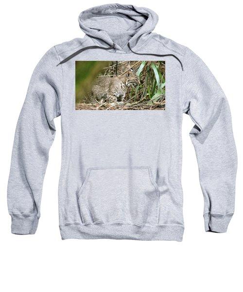 Mother Bobcat Sweatshirt
