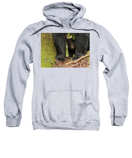 Mothers Day Bear Card Sweatshirt