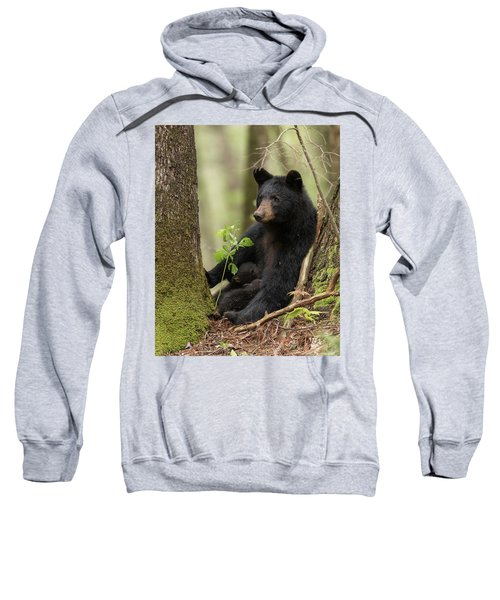 Mothers Loving Care Sweatshirt