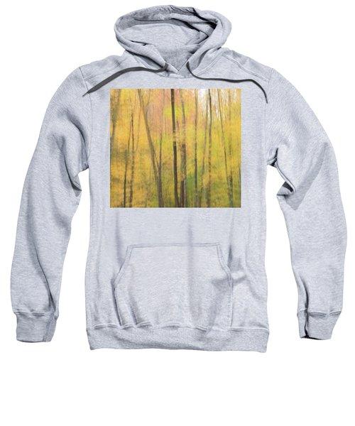 Motion In Color Sweatshirt