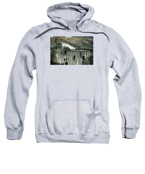 Mountain Forest Sweatshirt
