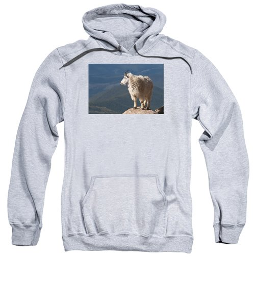 Sweatshirt featuring the photograph Mountain Goat by Gary Lengyel