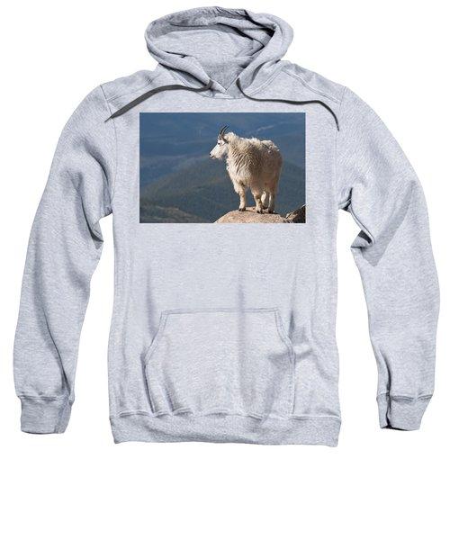 Mountain Goat Sweatshirt