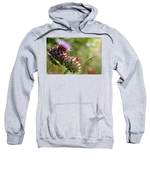 Mr And Mrs Thistle  Sweatshirt by Jeremy Lavender Photography