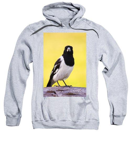 Mr. Magpie Sweatshirt