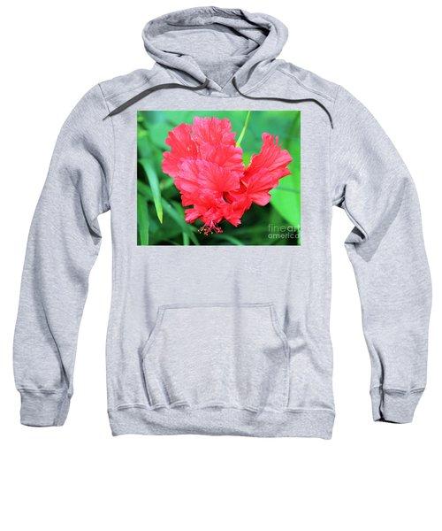 Multi-layered Red Hibiscus Sweatshirt