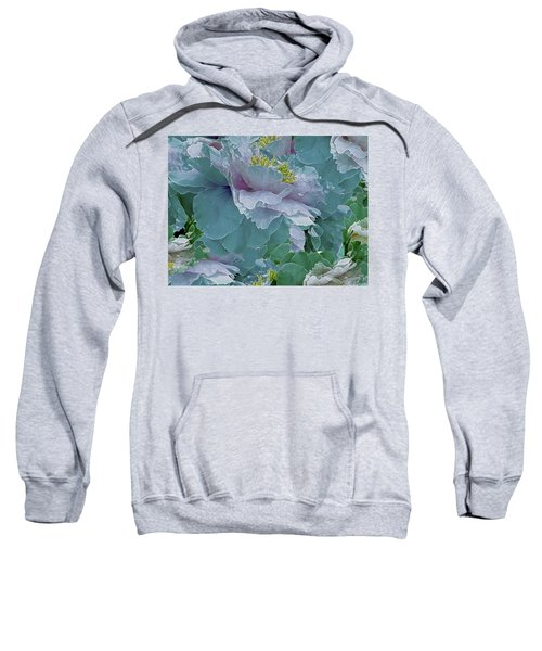 Multiplicity 23 Sweatshirt