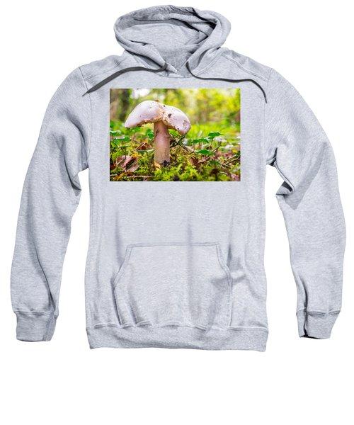 Mushroom Sweatshirt