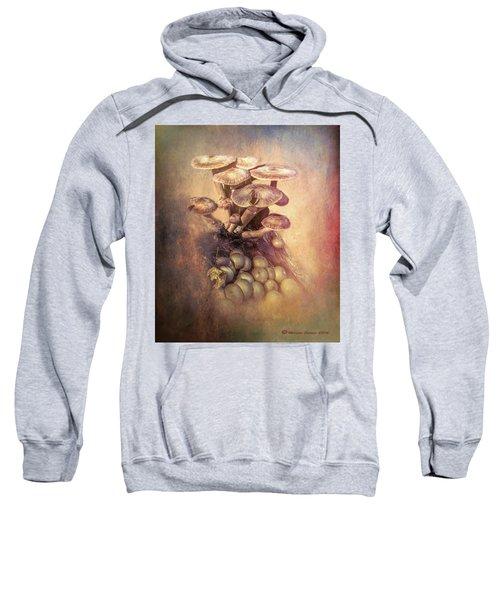 Mushrooms Gone Wild Sweatshirt