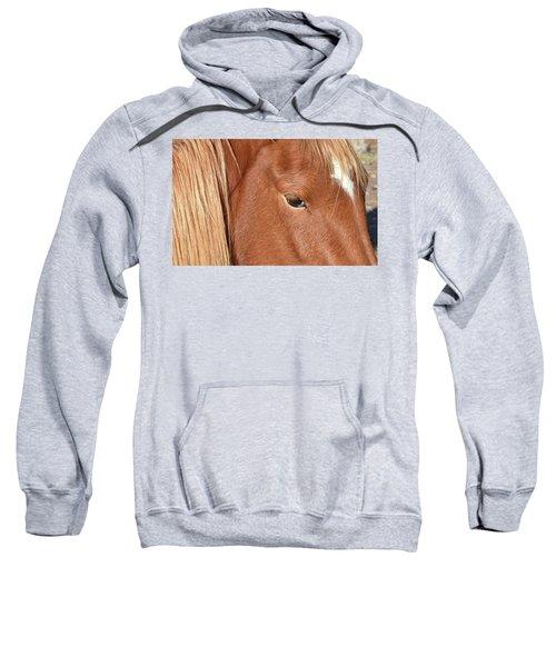 Mustang Macro Sweatshirt